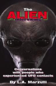 book-cover24