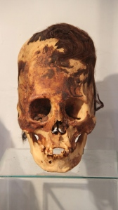 40 Paracas Skull