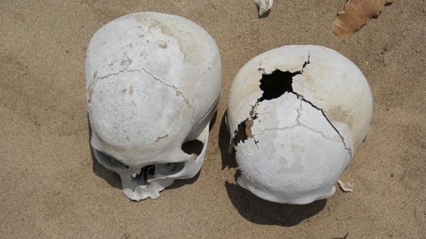http://lamarzulli.files.wordpress.com/2014/01/chongos-skull.jpg?resize=618%2C347